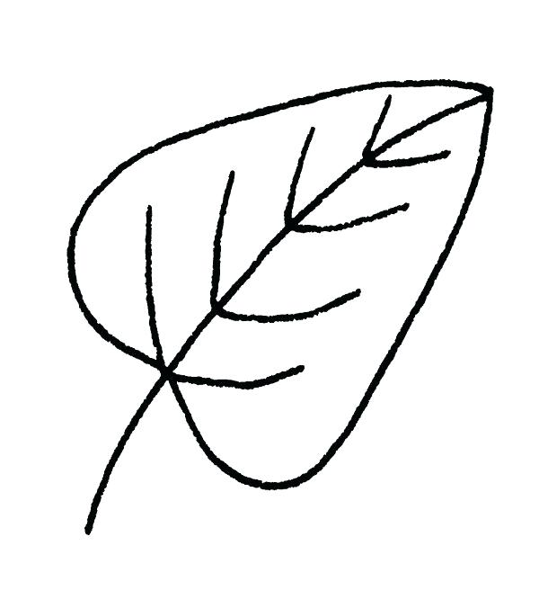 600x676 How To Draw Fall Leaves