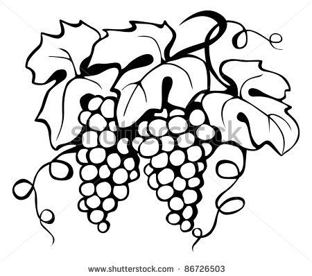 450x398 Black Drawing Of Grape And Leaves, Vector