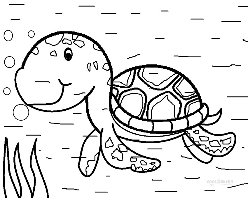 850x680 Leatherback Sea Turtle Drawing At Getdrawings Com Free For Baby