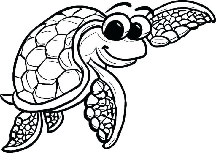 728x515 Mermaid Seahorse Coloring Pages Leatherback Sea Turtle Baby