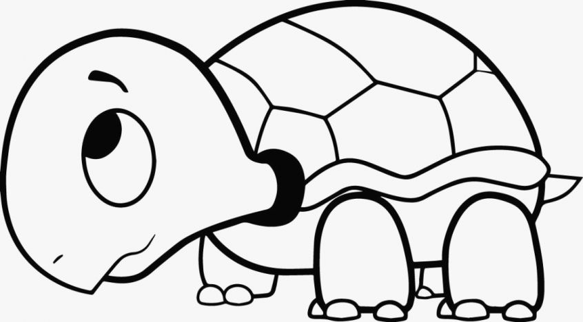 846x468 Coloring Pages Sea Turtle Coloring