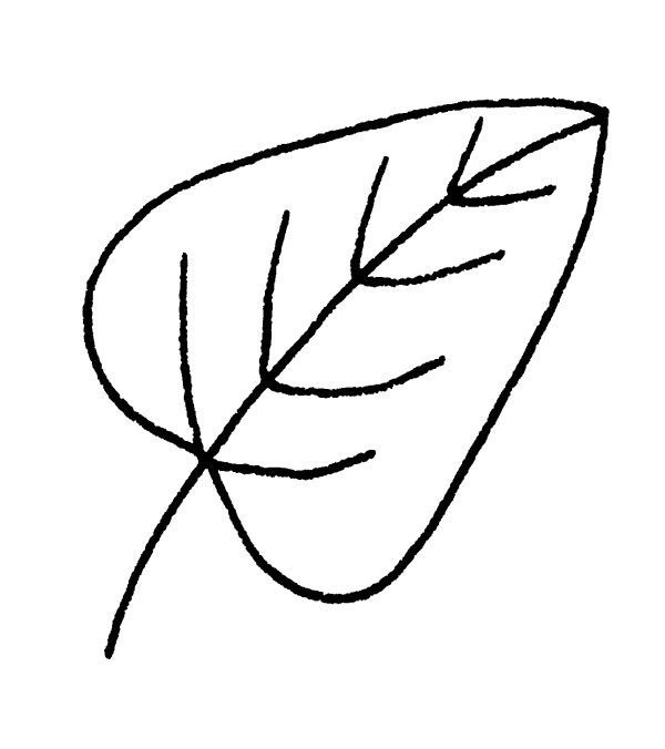 600x676 Green Fall Leaf Drawing Draw A Autumn For Leaves