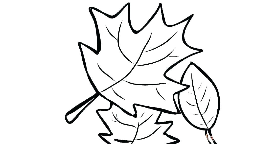 1120x584 Fall Leaves Coloring Pages Printable Leaf Coloring Pages Fall
