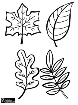 259x350 Autumn Art Activity And Lesson Plan For Kids Autumn Leaves Tpt