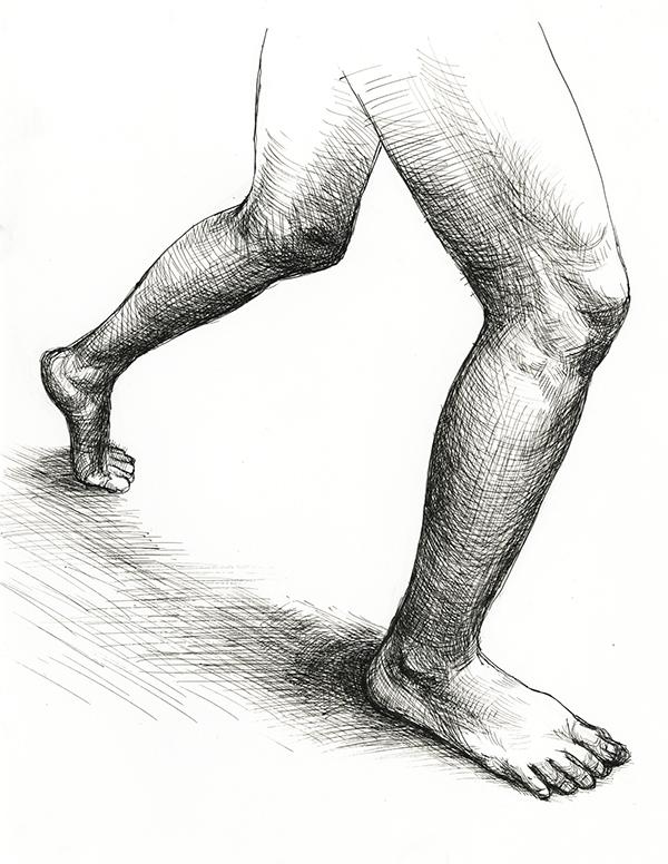 600x776 Artistic Anatomy On Risd Portfolios