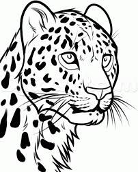 202x250 Leopard Cartoon