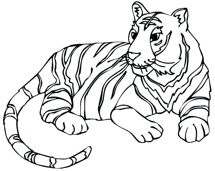 755x600 Leopard Coloring Pages Leopard Coloring