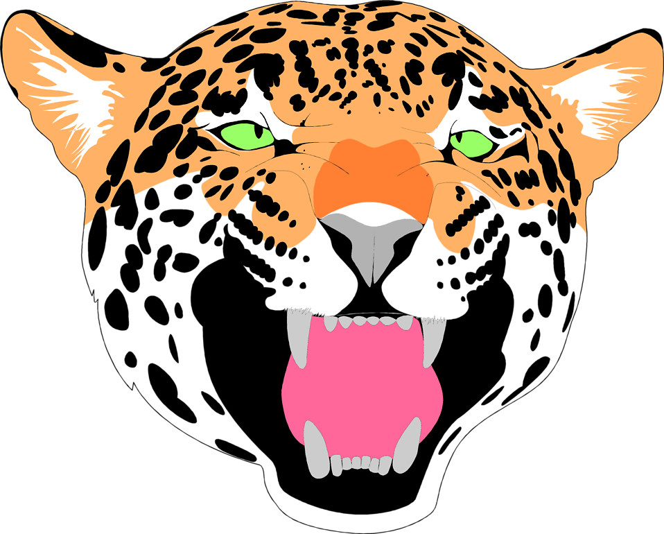 958x770 Drawing Jaguar Face Frames Illustrations Hd Images Photo