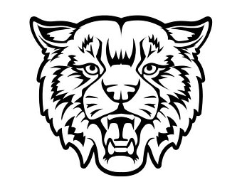 340x270 Huge Collection Of 'bobcat Face Drawing' Download More Than