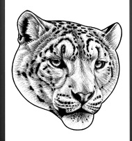 190x203 Snow Leopard Iphone Case Spreadshirt