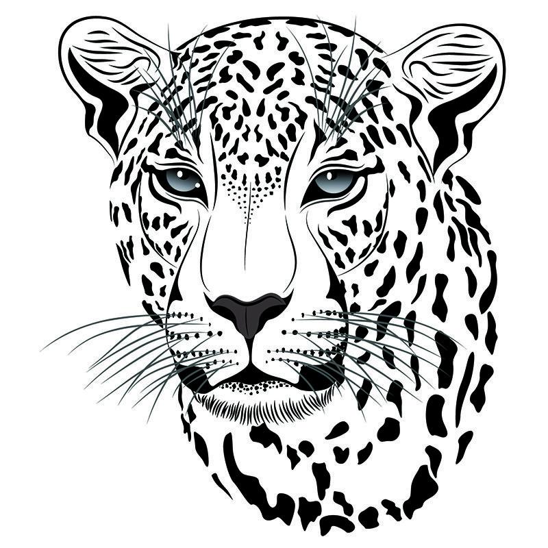 800x800 Animals Air Brush Stencials Drawings, Art, Stencils