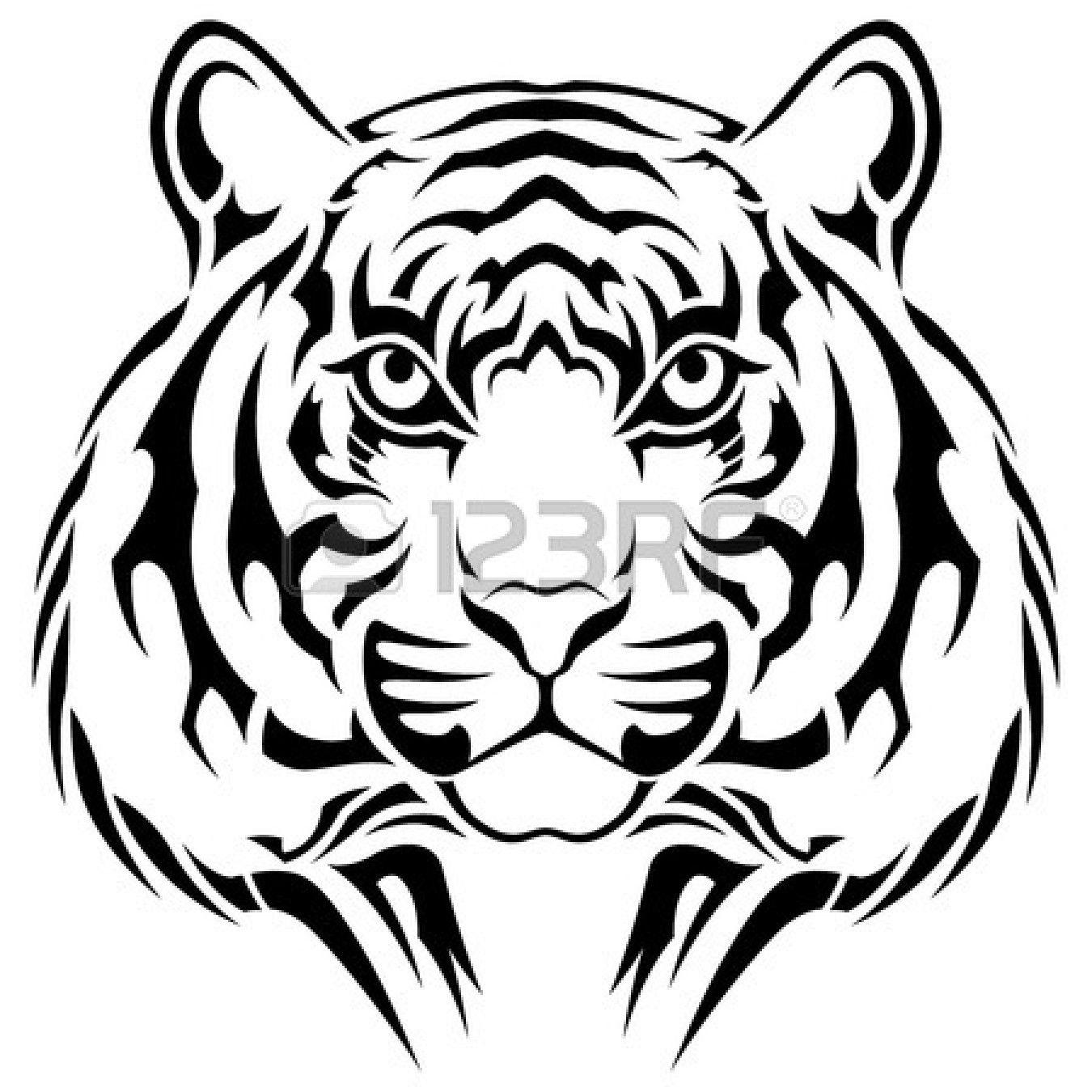 1350x1350 Leopard Eye Vector
