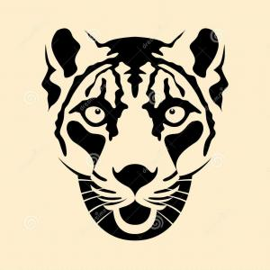 300x300 Best Snow Leopard Head Face Vector Illustration Style Flat Drawing