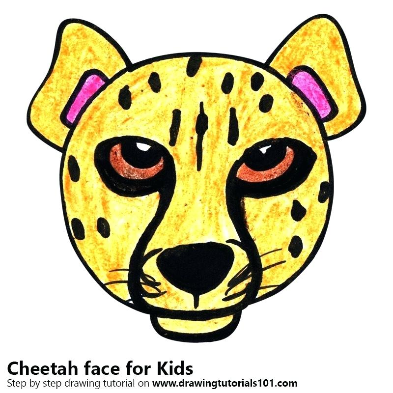 800x800 cheetah face drawing set of cheetah vector cheetah face pencil