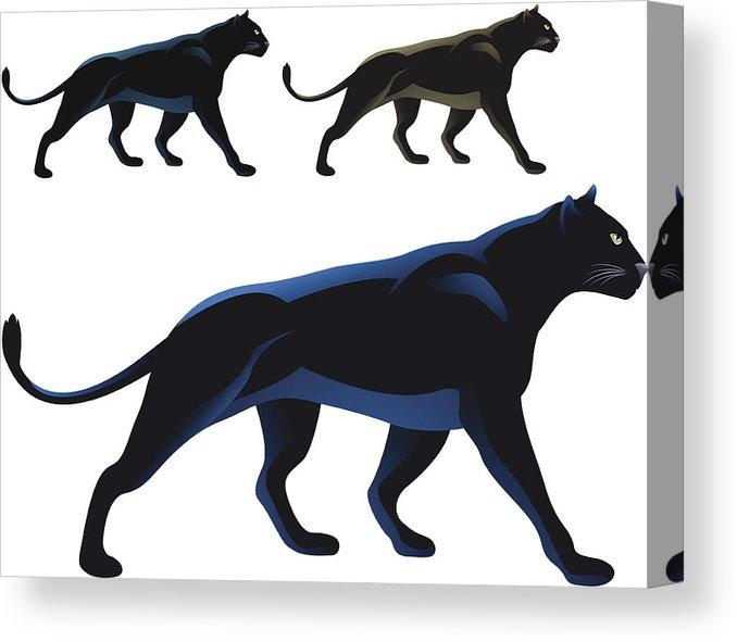678x591 Black Panther Canvas Print Canvas Art