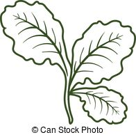 196x194 Leaf Lettuce Illustrations And Clipart Leaf Lettuce Royalty