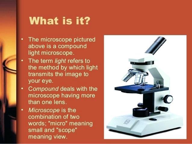 638x479 compound light microscope compound light microscope parts