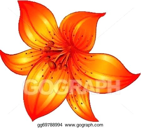 450x409 Lilly Flower Drawing One Simple Lily Flowers Lily Flower Drawing