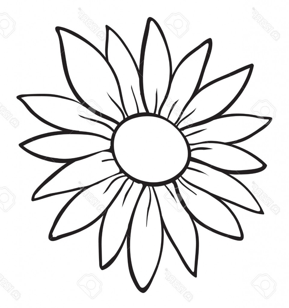 961x1024 Lily Flowers Drawing Outline Picture Of Flower