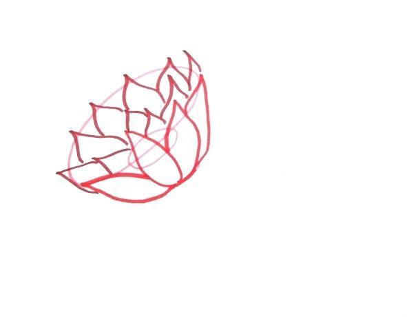 591x460 Lilies Drawing