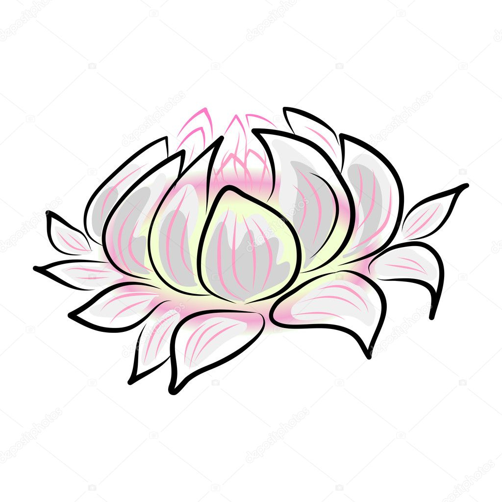 1024x1024 water lily flower drawing water lily stock vector atthameeni