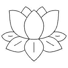 224x225 Lily Pad Template