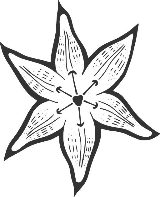 512x627 Lily Pad Flower Png Black And White Vector, Clipart