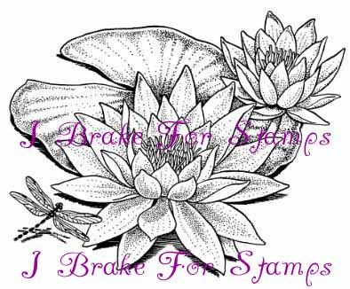 394x326 Wonderous Water Lily I Brake For Stamps