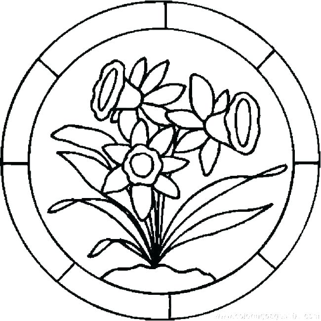 650x650 Lily Coloring Pages