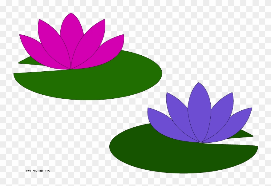 880x605 Go Back Gallery For Lily Pad Flower Clipart