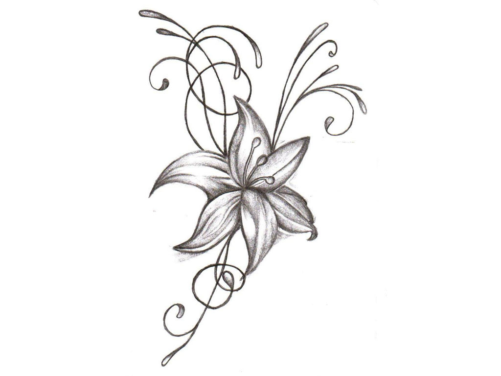1024x768 Drawing Flower Hd Images Lily Flower Tattoo Drawing Hd