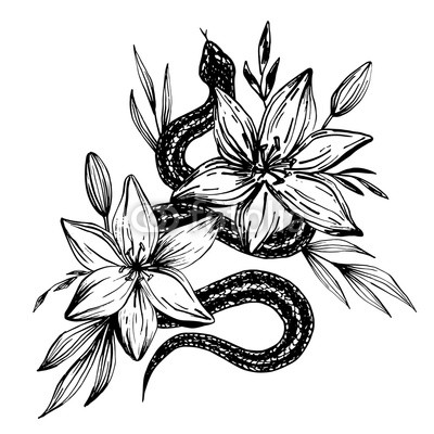 400x400 Hand Drawn Ink Snake And Lilies Flowers, Vector Illustration