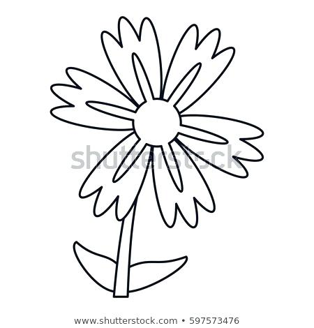 450x470 Vector Bouquet With Outline Lily Of The Valley Or F Water Lily