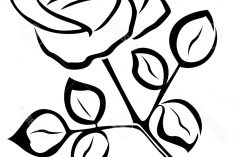 236x157 Black And White Flower Drawing Images Lily Tattoo Shaded Line Gif