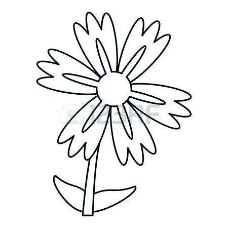 Lily Tattoo Drawing | Free download best Lily Tattoo Drawing