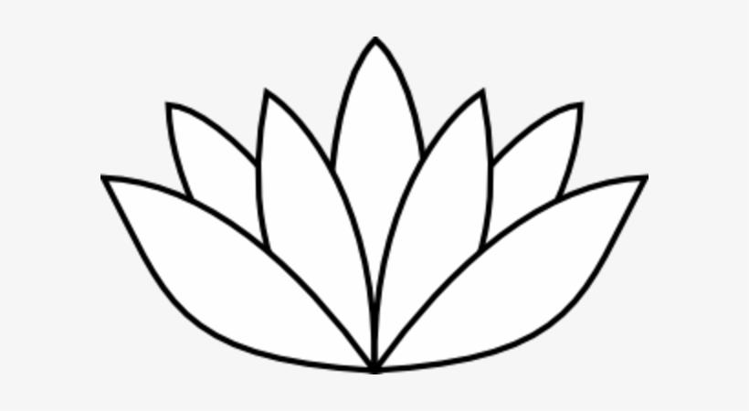820x450 Best Photos Of Medium Lily Pad Outline