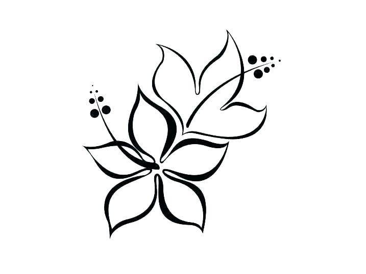 717x538 Printable Lily Pad