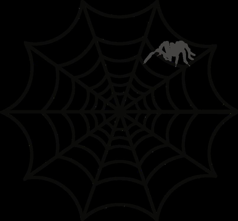 806x750 spider web drawing web design australian funnel web spider cc0