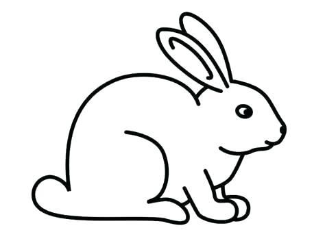 474x355 drawing of rabbit draw a bunny rabbit bunny rabbit drawings step