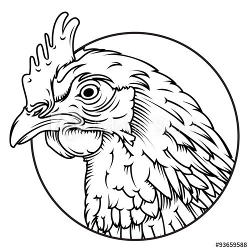 500x500 Chicken Head Line Drawing Isolated Easy To Edit And High