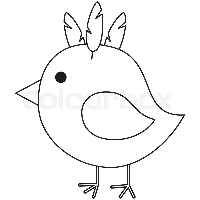 800x800 Line Art Black And White Chicken Chick Stock Vector Colourbox