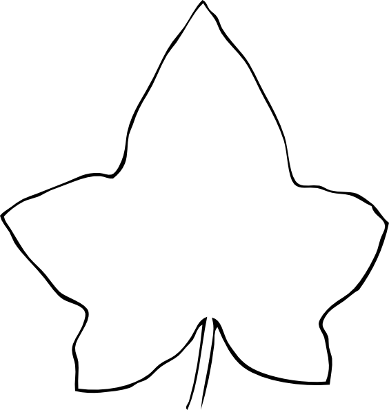 564x595 Line Drawing Leaf Clip Art