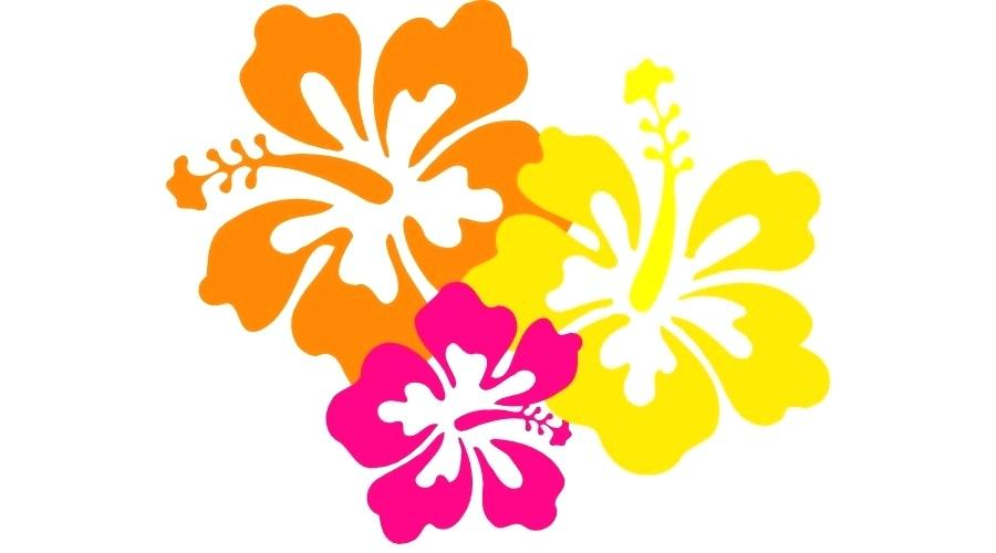 900x500 Flower Drawing Clipart