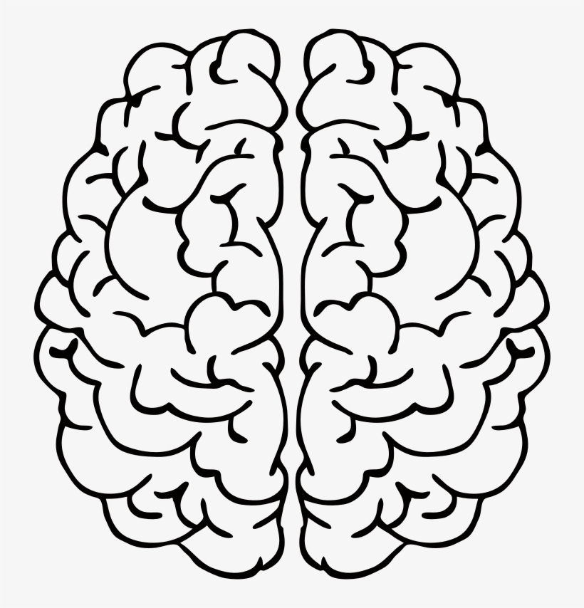 820x854 Clip Art Black And White Download Brain Line Drawing