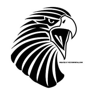 310x293 Eagle Line Vector Drawing Free Graphics Uihere