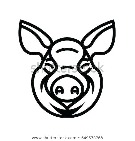 450x470 pig head drawing lord of the flies pig head drawing pig head