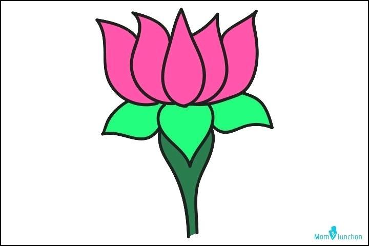 720x480 Drawing Lotus Flower Lotus Flower Line Drawing Vector Free