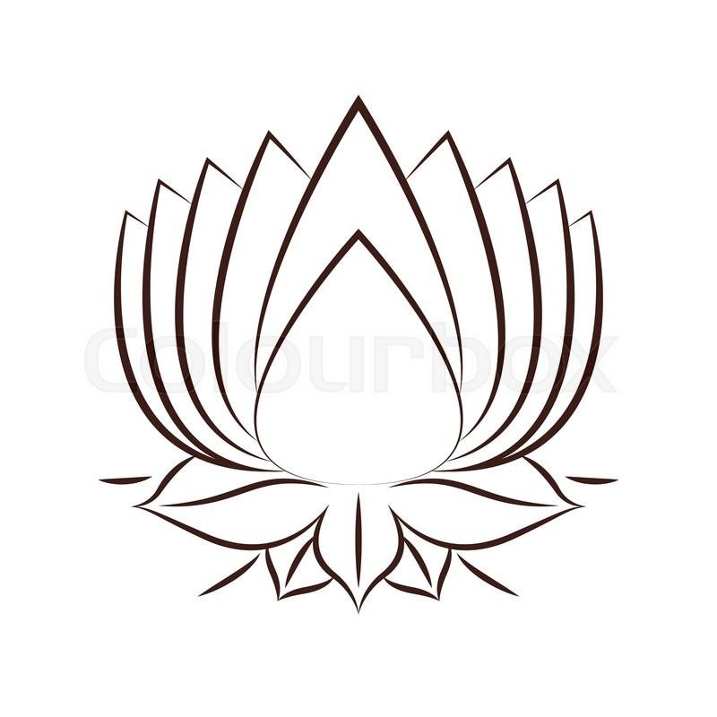 800x800 Lotus Flower Drawing