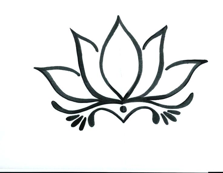 736x571 lotus flower drawing lotus flower line drawing x lotus flower
