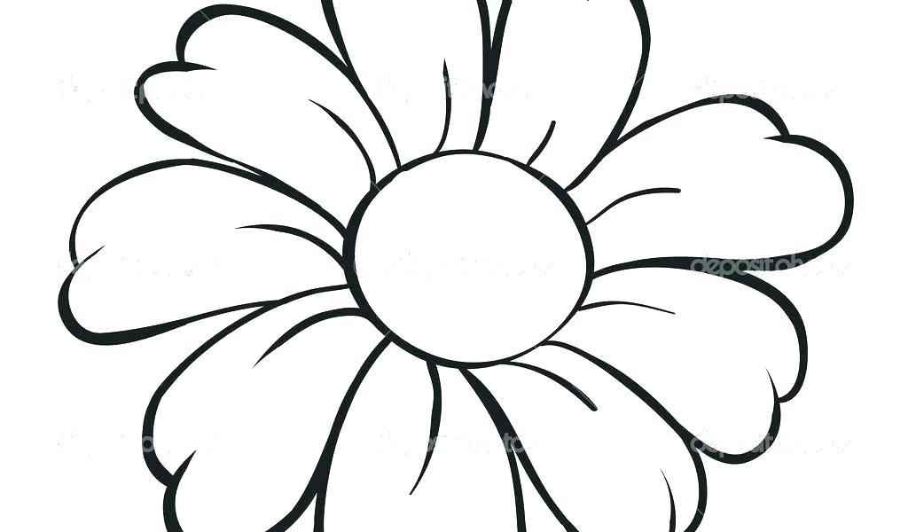 1024x600 Lotus Flower Sketch Lotus Flower Sketch